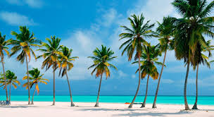 punta cana senior singles A tropical climate and white-sand beaches make punta cana the dominican republic's top caribbean travel destination book an all-inclusive vacation package.