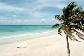 bahia senior singles Enjoy over 50s cruises, holidays in the uk and abroad with saga travel browse through our numerous holiday packages and travel services.